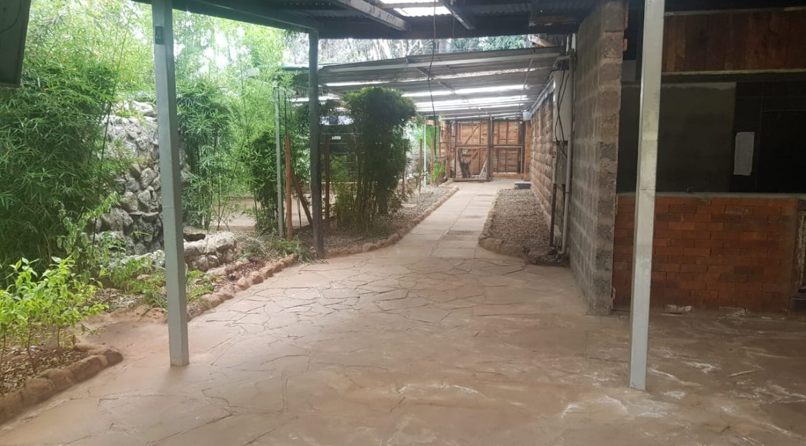 Commercial Property To Let Ideal for Restaurant or School in Prime Location in Karen10