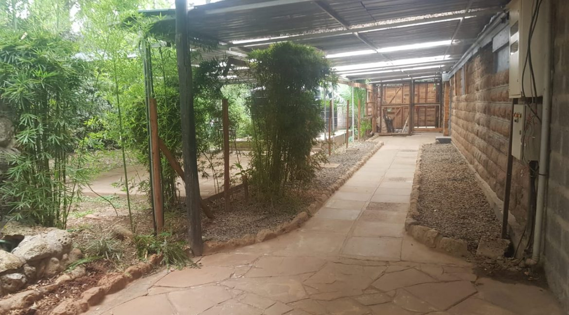 Commercial Property To Let Ideal for Restaurant or School in Prime Location in Karen5