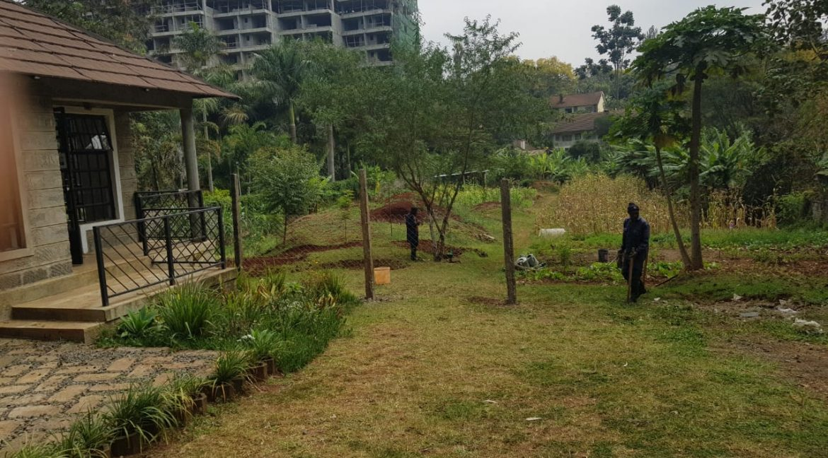 Office Space Available To Let Own Compound in Kileleshwa, Nairobi3