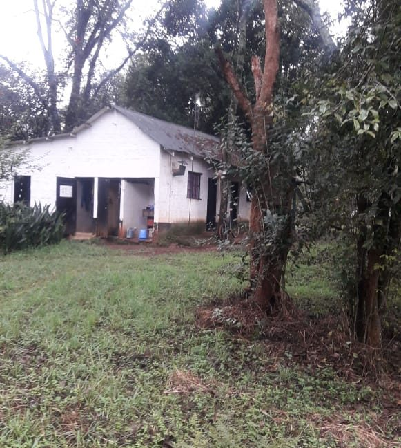 5 Acres Of Land for sale in Hardy at KSH50M Per Acre with a Beautiful Cottage13