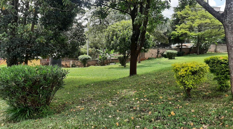 6 Bedrooms Office Space for Rent in Riverside at Ksh500k:Month31