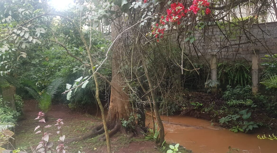 Prime Land for Sale on Peponi Road Ideal for Redevelopment of Town Houses at Ksh165M negotiable14