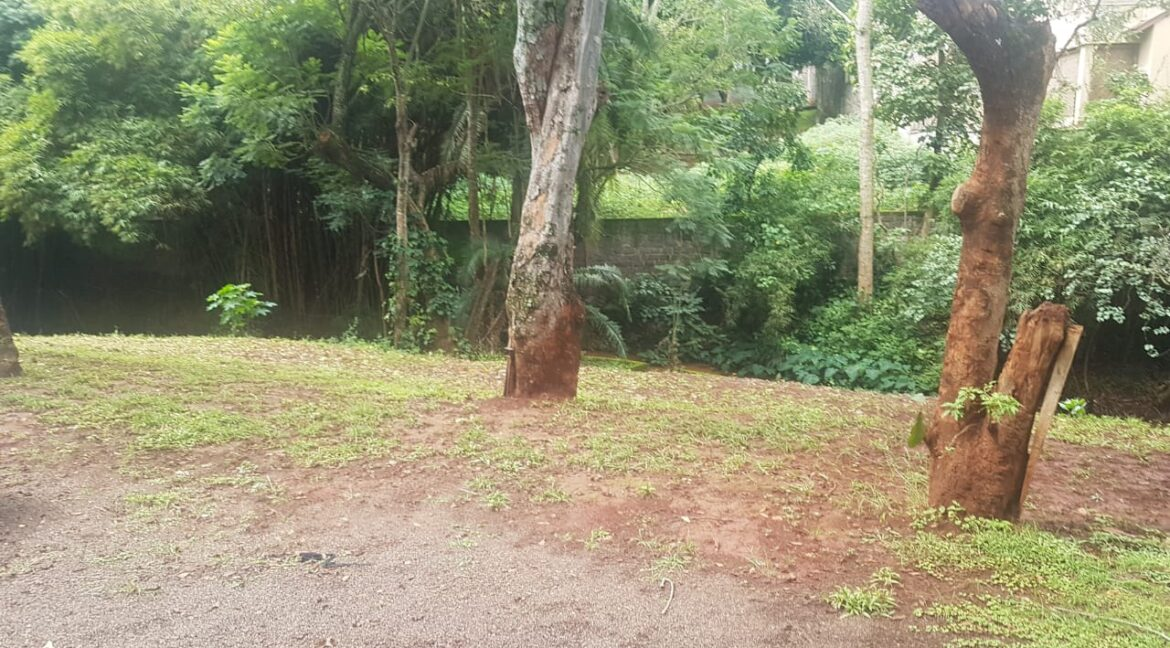 Prime Land for Sale on Peponi Road Ideal for Redevelopment of Town Houses at Ksh165M negotiable21