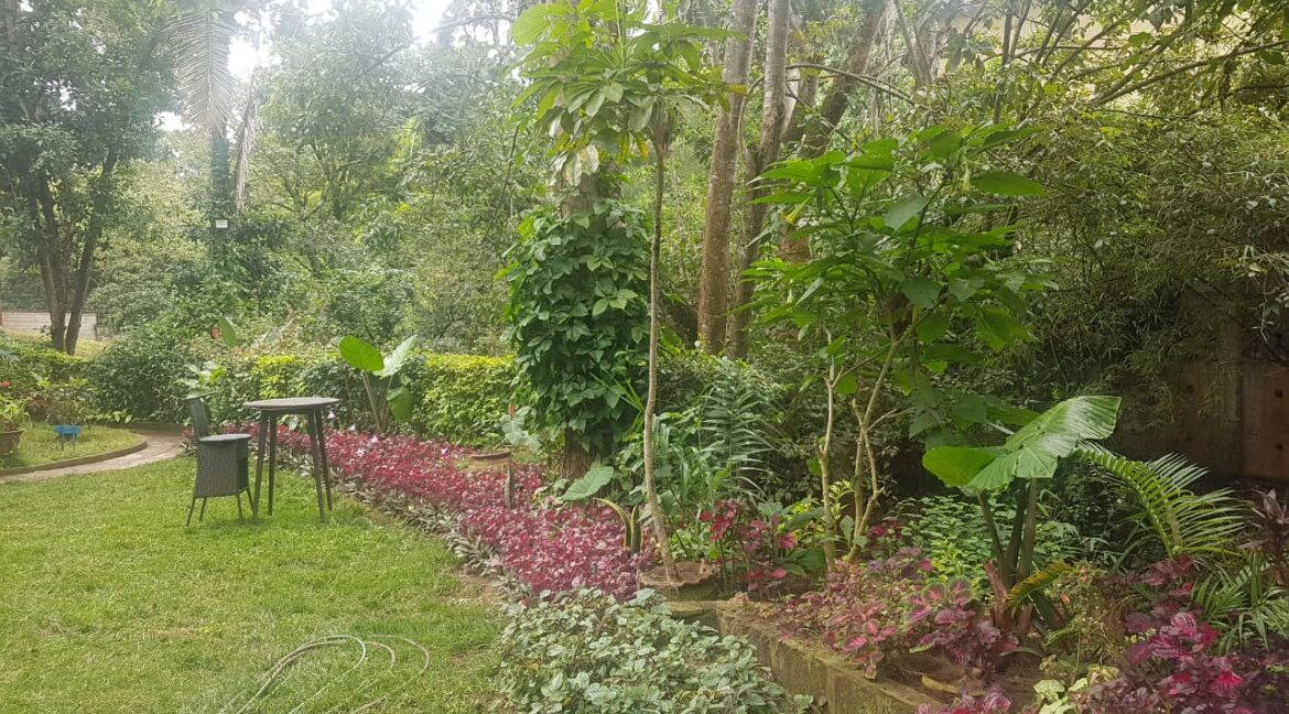 Prime Land for Sale on Peponi Road Ideal for Redevelopment of Town Houses at Ksh165M negotiable4