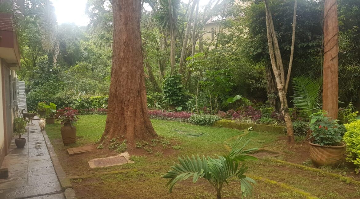 Prime Land for Sale on Peponi Road Ideal for Redevelopment of Town Houses at Ksh165M negotiable6